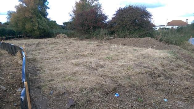 Mackley Shoreham environment