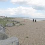Mackley Shoreham beach clean home