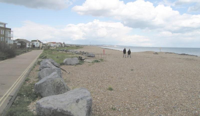Mackley Shoreham beach clean
